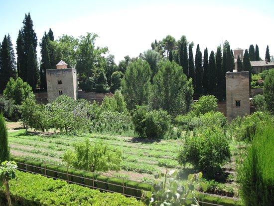 Granada a Pie : jardin