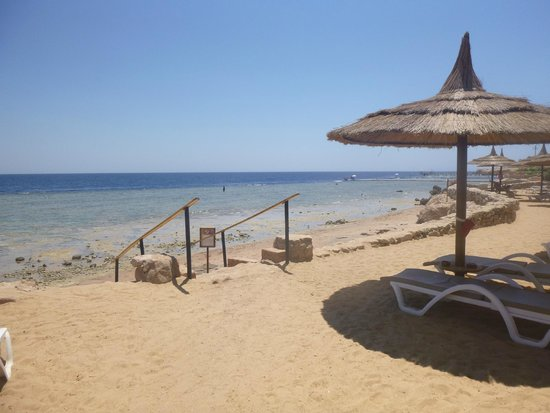 Royal Grand Sharm Hotel : Every lunch it would be dead