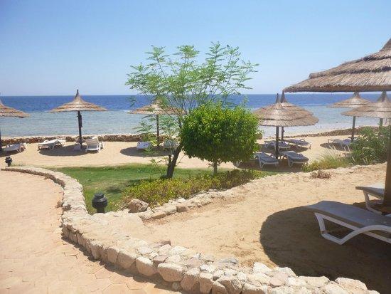 Royal Grand Sharm Hotel: Gorgeous beach