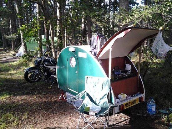Rothiemurchus Camp and Caravan: The man in the wee green van