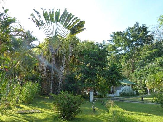 Villas Rio Mar: vue de notre chambre