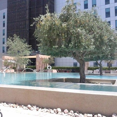 Aloft Abu Dhabi: Pool
