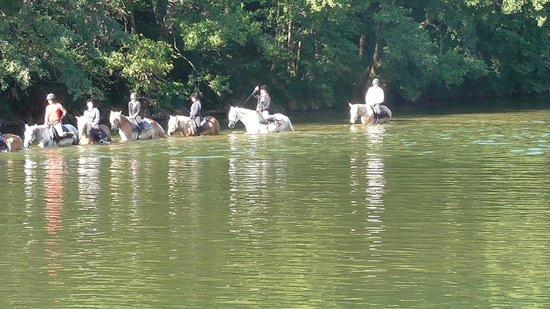 Equitation Chavetourte