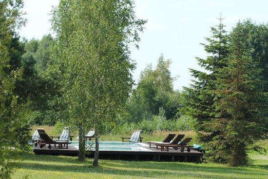 Kruklin Siedlisko: Basen wśród drzew