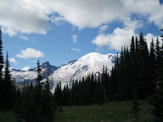 Paradise Inn at Mount Rainier: Mt. Rainier
