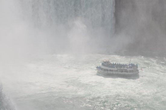 Niagara Falls: MotM