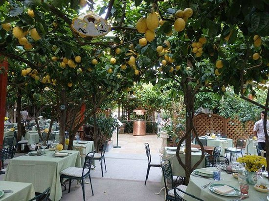 Da Paolino Lemon Trees : Restaurant during daylight