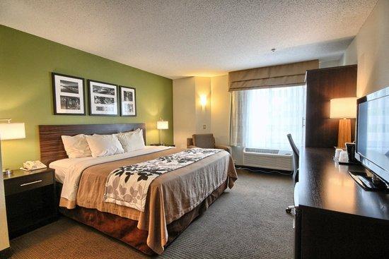 Sleep Inn: King Room