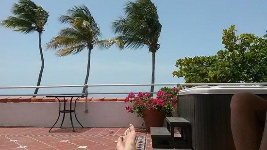 Tres Palmas Inn: Vista