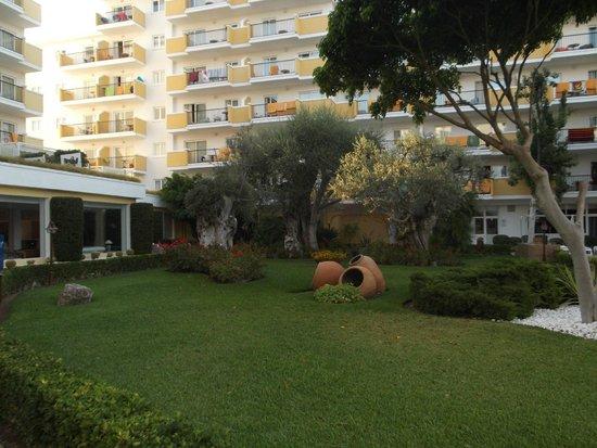 IBEROSTAR Alcudia Park: Zona recreativa