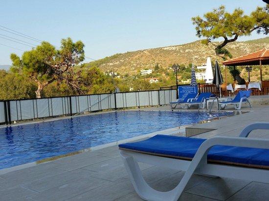 Apollon Hotel: La piscina: pulita e tranquilla