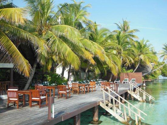 Ranveli Village: bar