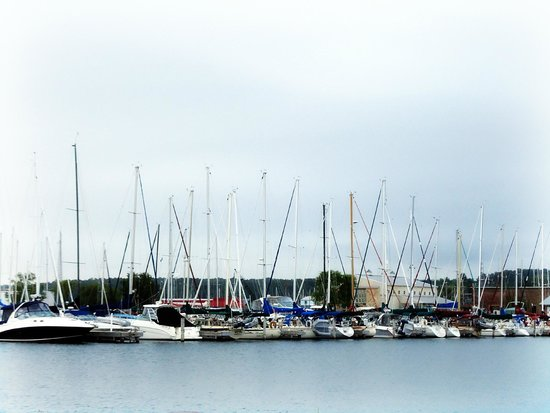 Bayfront Inn: View of the Marina