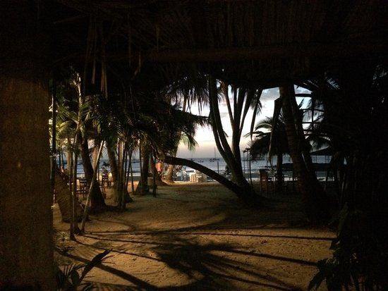 La Palapa: The view right outside our room.