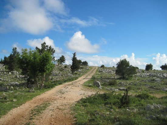 Funiculaire de Dubrovnik : walking country