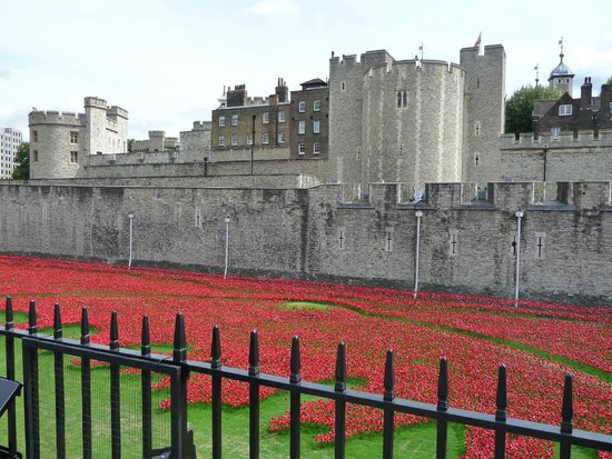 Tower of London: FIELD OF POPPIES