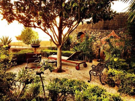 Hotel Alavera de los Banos : Jardin