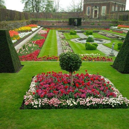 Hampton Court Palace: beautiful garden