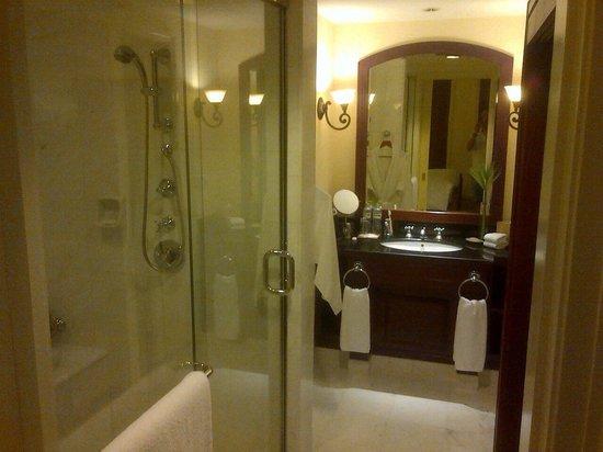Park Hyatt Saigon: Classic Bathroom