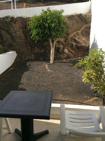 H10 Timanfaya Palace: Garden view