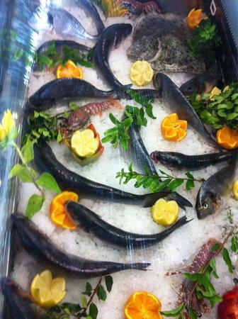 Hivaoa Porto Cervo: Fish Bar at Hivaoa