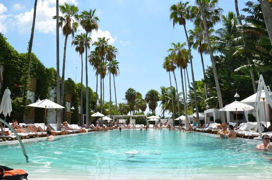 Delano South Beach Hotel Piscina