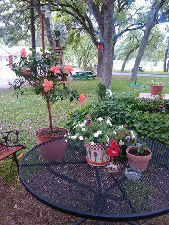 Frederick Motel : Beautiful Seating Area under Oak Trees