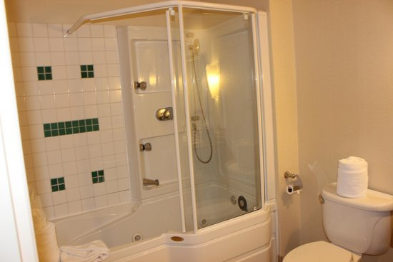 The Mansion on Delaware Avenue: Nice Jacuzzi Shower & Tub