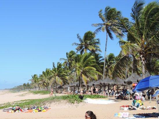 Grand Palladium Imbassai Resort & Spa: Praia do hotel