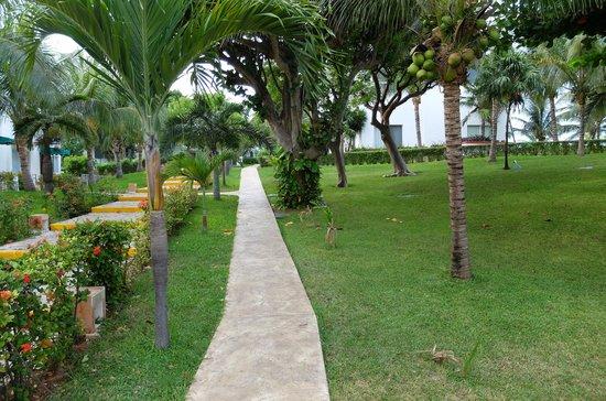 Dos Playas Hotel Cancun: Garten Dos Playas