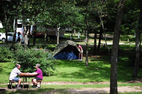 Wisconsin Dells KOA: Tent Sites