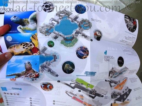 Lisbon Oceanarium: The map
