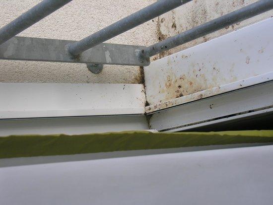 Hotel Vent D'Iroise : davanzale della finestra