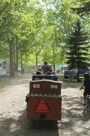 Ol' MacDonalds Resort: Kiddie train drives around the campground