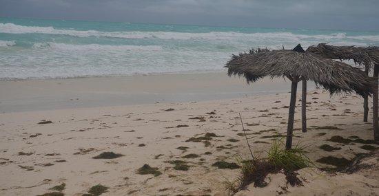Memories Paraiso Beach Resort : PLAYA TORMENTOSA