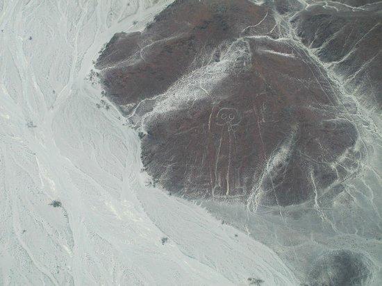 Lineas de Nazca: astronaut