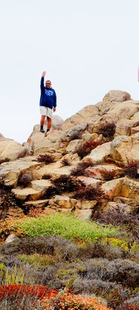 17-Mile Drive : On the top of the rock