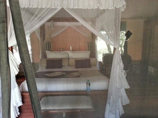 Mara Intrepids Luxury Tented Camp: The tents/rooms