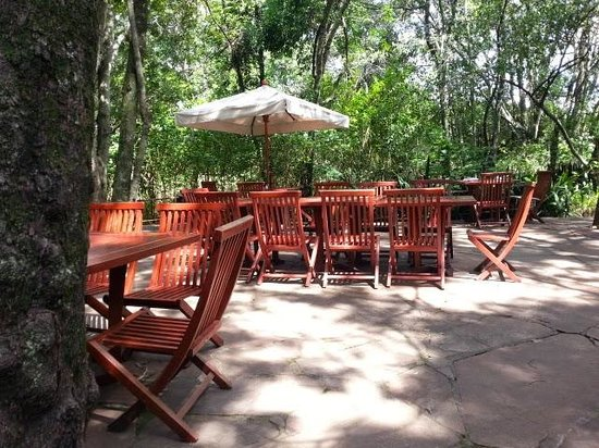 Mara Intrepids Luxury Tented Camp: Restaurant under green trees!