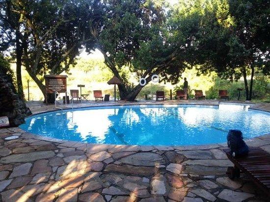Mara Intrepids Luxury Tented Camp: pool area