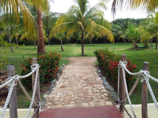 Royalton Hicacos Varadero Resort & Spa: Das Resort