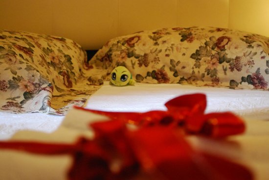 Angel's Home Hotel: Bed with turtle