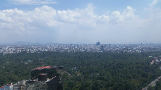 Hyatt Regency Mexico City: View from the Concierge Lounge