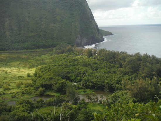Waipi'o Valley: The view from the top is amazing!