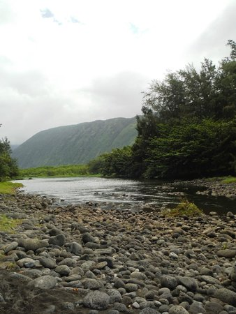Waipi'o Valley: This would be a great place to camp!