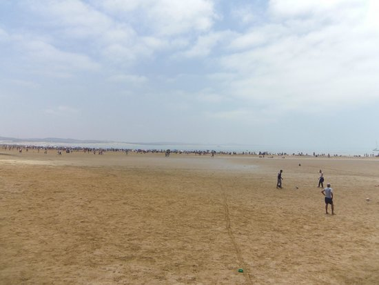 Essaouira Beach: l'immense plage