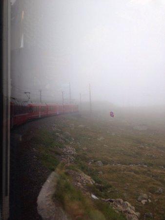 Bernina Express: Mto bello assolutamente consigliato