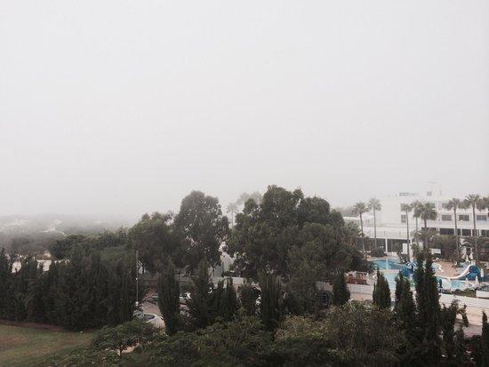 Asterias Beach Hotel : Утренний туман, очень красиво