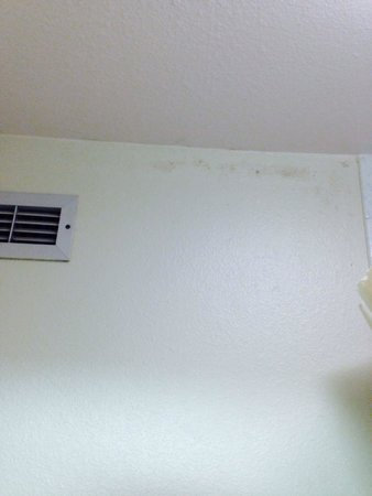 Super 8 Sterling CO : Mildew in bathroom. No exhaust fan