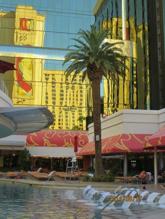 Golden Nugget Hotel: GNH's Tank Pool, Las Vegas